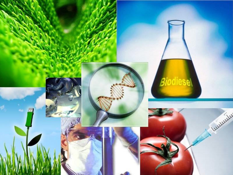 La carrera de biotecnología